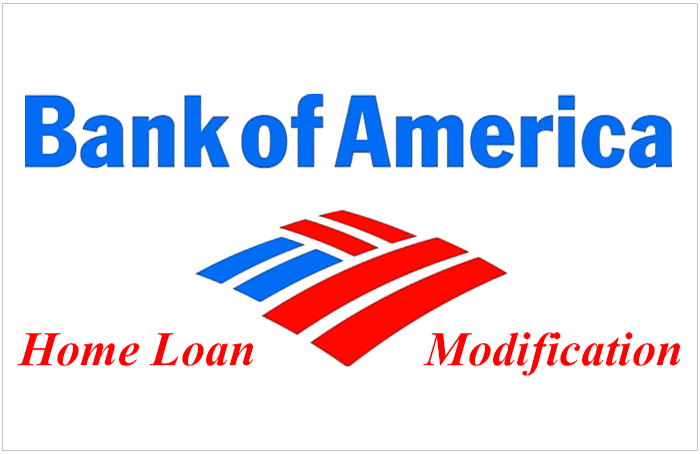 Bank Of America Loan Modification Process & Guidelines. What Does A Social Media Manager Do. Hepatitis C Genotype 2 Treatment. Aarp United Healthcare Silver Sneakers. First Alert Professional Security Systems. Best Tablet Pc For Drawing Mls Degree Online. Jacksonville Garage Door Repair. Bronto Email Marketing Small Magellanic Cloud. Performing Arts High Schools In Chicago